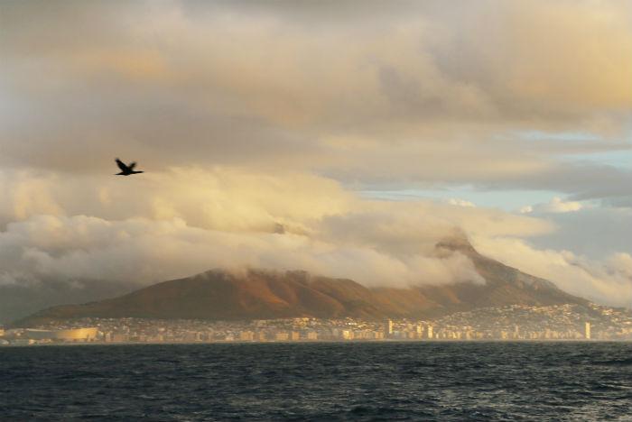 Do Waterfront saem passeios pela fotogênica Table Bay